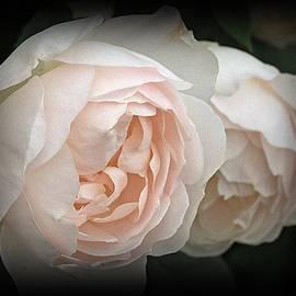 Richard Stubbs - Double The Beauty