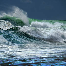Double Wave by Frank Wilson