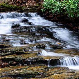 Michael Scott - Down By The Creek