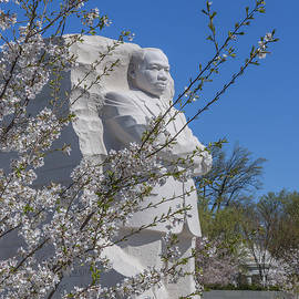 Gerry Gantt - Dr. Martin Luther King, Jr. Memorial at Cherry Blossom Time DS0072