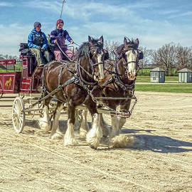 Tony Crehan - Draft Horse Driving Clinic - Kentucky Horse Park