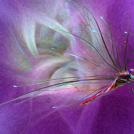 Suzanne Williams - Dragon Fly