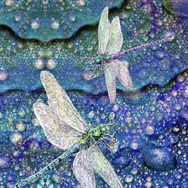 Dragonflies on Dragon Tears by Michele Avanti