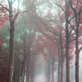 Youshij Yousefzadeh - Dreaming Autumn