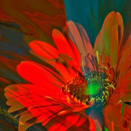 Jeff Swan - Dreaming of flowers