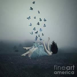 Dreams Like Butterflies by Ilona Flores
