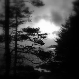 Dreamscape by Greg DeBeck