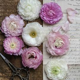 Kim Hojnacki - Dreamy Ranunculus