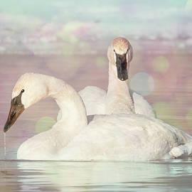 Patti Deters - Dreamy Swans #1