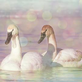 Patti Deters - Dreamy Swans #2