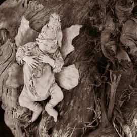 Driftwood Fairy - Fine Art