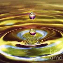Arnie Goldstein - Drip Drop