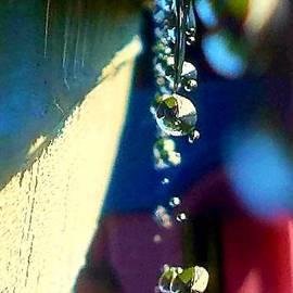 Drip Line by Beverly Elliott