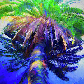 Drowning Palm On The Loop by Alice Gipson