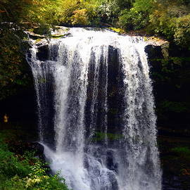 Carla Parris - Dry Falls in the Nantahala National Forest