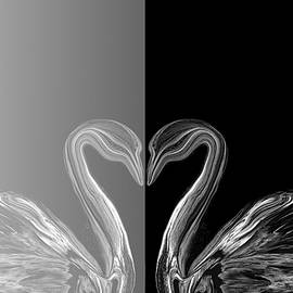 Abstract Angel Artist Stephen K - Duality
