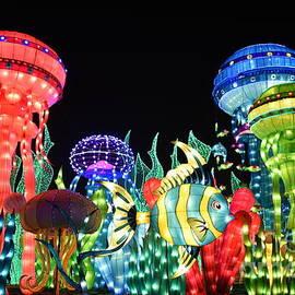 Hanza Turgul - Dubai - Garden Glow