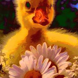 Catherine Lott - Fuzzy Duckling And Daisies