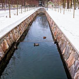Jukka Heinovirta - Ducks In The Canal