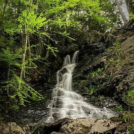 Jan Mulherin - Dunn Falls - Upper 2