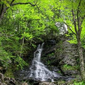 Jan Mulherin - Dunn Falls - Upper