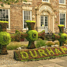 Robert Murray - Durham Floral Display