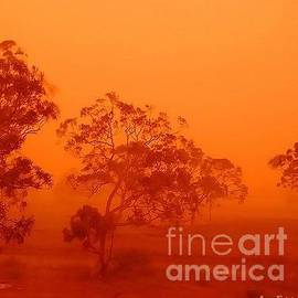 Leanne Seymour - Australian Desert Dust Storm