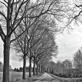 Carol Groenen - Dutch Road in Winter Black and White