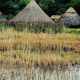 Dyflin Viking Village, Ireland by Marcus Dagan