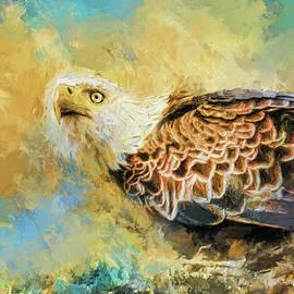 Jai Johnson - Eagle Alerted