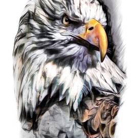 Scott Wallace - Eagle Color Sketch