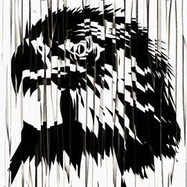 Mario Carini - Eagle Eyes
