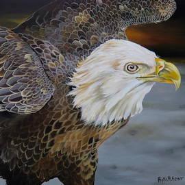 Eagle Landing by Phyllis Beiser
