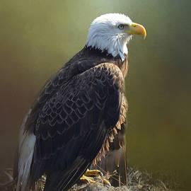 Carla Parris - Eagles Rest Ministries
