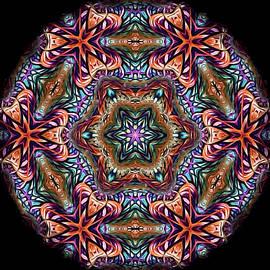 Susan Maxwell Schmidt - Early Autumn Mandala