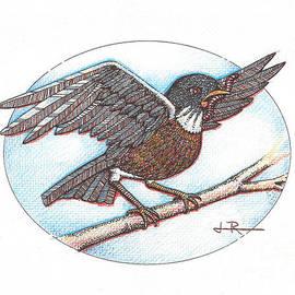 Jim Rehlin - Early Bird, alighting