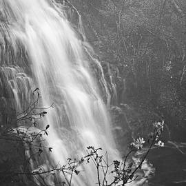 Early Morn - Amicalola Falls by Robert Brown