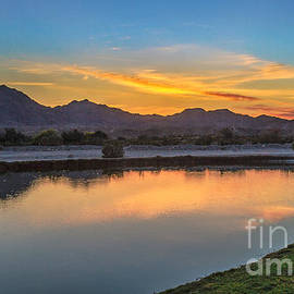 Early Morning Color by Robert Bales