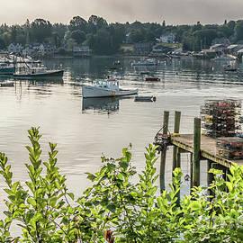 Elizabeth Dow - Early Morning in Maine