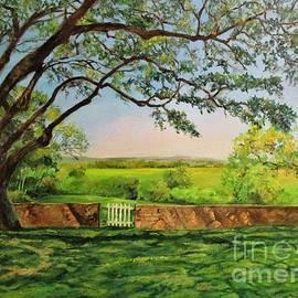 Early Morning View at Chapman Ranch by Barbara Moak