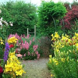 Nancy Pauling - Early Summer Garden