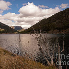 Earthquake Lake by Cindy Murphy - NightVisions
