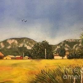 Sue Carmony - East Boulder Farm