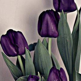 Sherry Hallemeier - A Display of Tulips