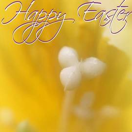 Easter Yellow by Jenny Revitz Soper
