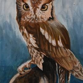 Eastern Screech Owl by Marta Kazmierska