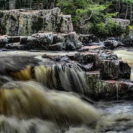 Eau Claire Dells Spring Flow by Dale Kauzlaric