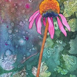 Nancy Jolley - Echinacea