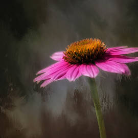 Echinnacea Flower Essence by Kim Hojnacki