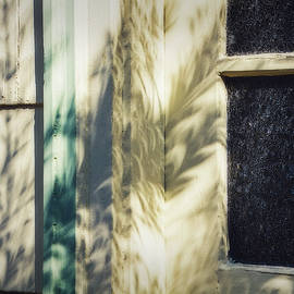 Eclipse Shadows by Terry Davis